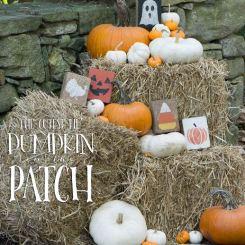 cutest-pumpkin-patch